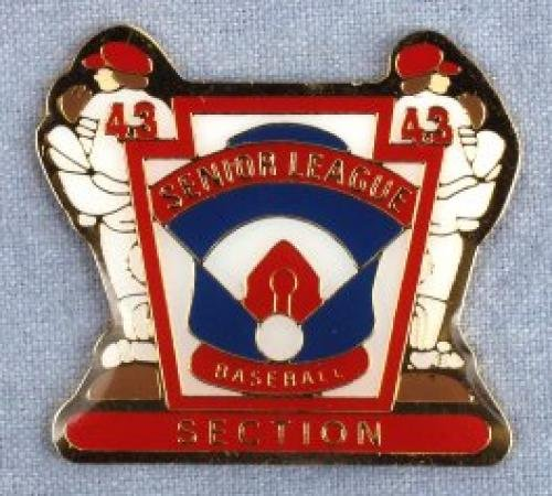 section senior league baseball pin