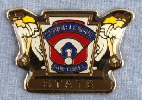 state senior league softball pin