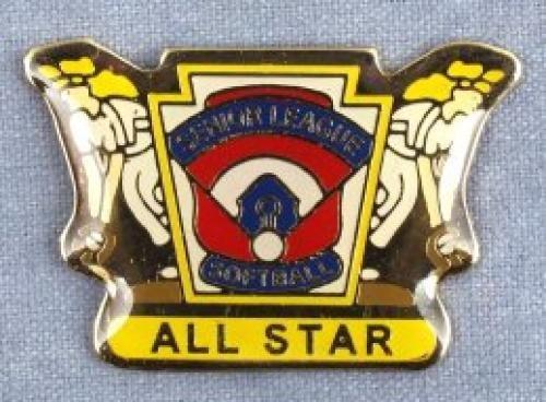 all star senior league softball pin