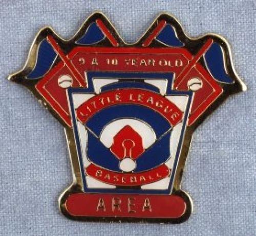 area 9-10 year old baseball pin