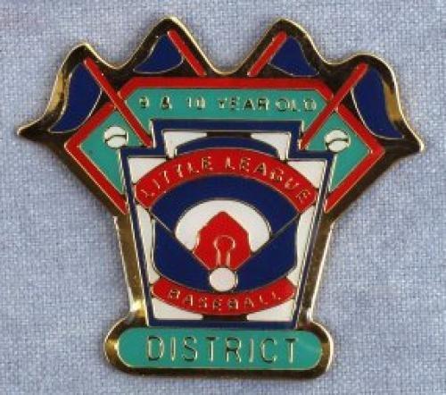 district 9-10 year old baseball pin