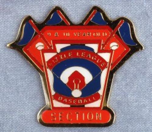 section 9-10 year old baseball pin