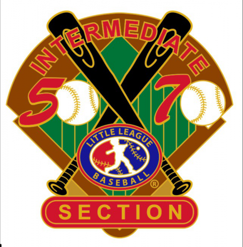 section 50/70 tournament little league pin