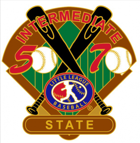 state 50/70 tournament little league pin