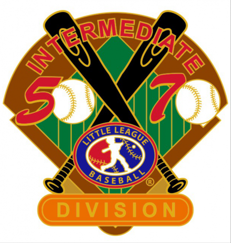 division 50/70 tournament little league pin