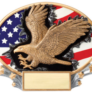 eagle download modelyear medallion image