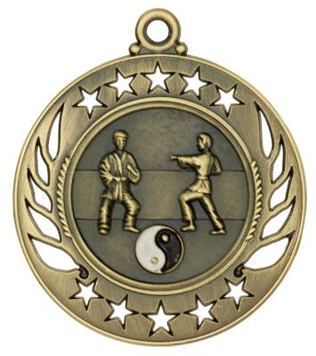 karate galaxy medal
