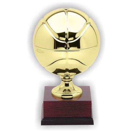basketball cast award