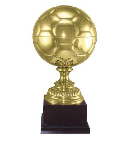 Soccer Cast Award