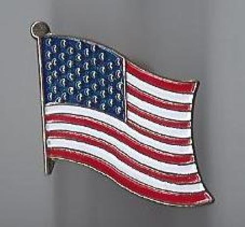 us flag pin #3