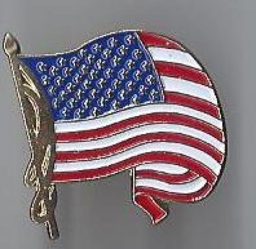 us flag pin #5