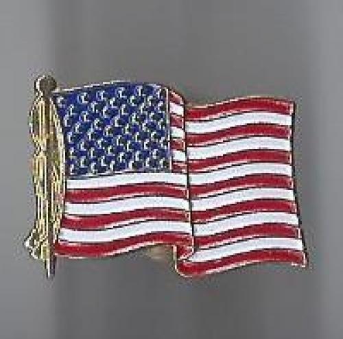 us flag pin #7