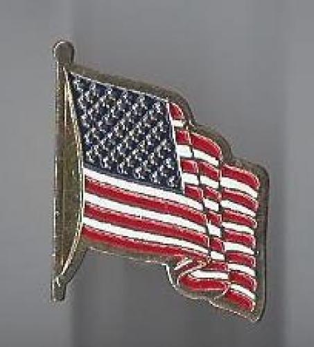 us flag pin #8