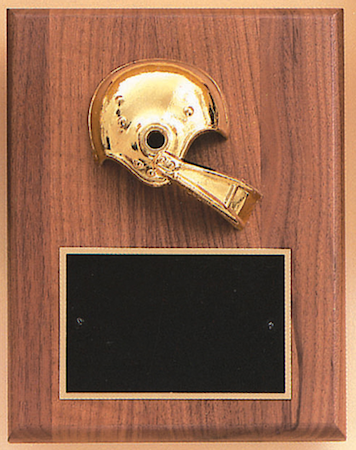 activity casting plaque - football helmet