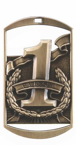 first place dt series medal