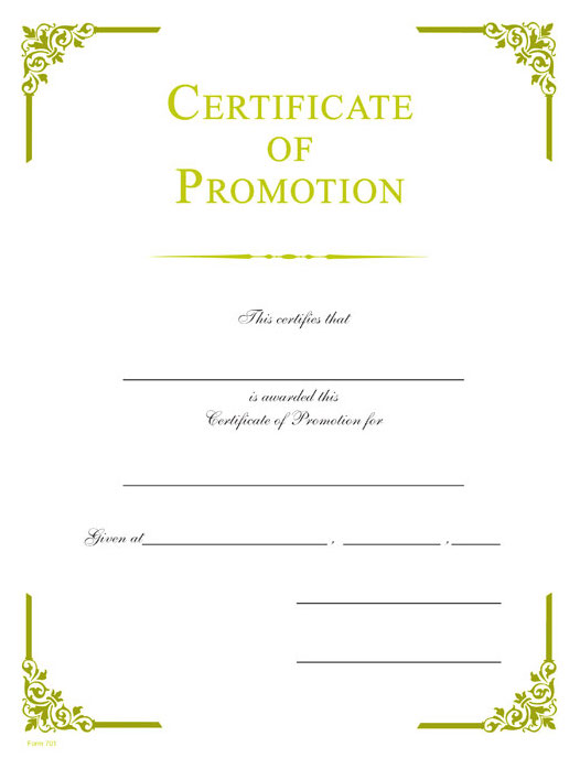 Promotion Gold Foil Certificate Wilson Awards